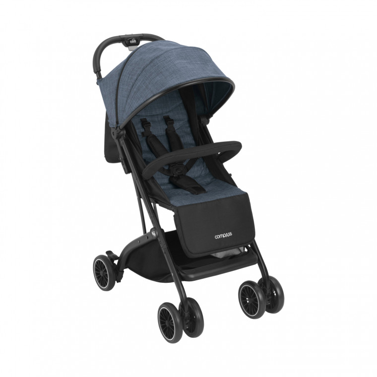 Cam Compass Buggy