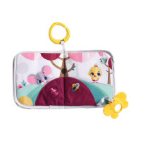 Tiny Love Princess Tales Buggyboekje